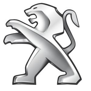 """Peugeot"" raktų gamyba"
